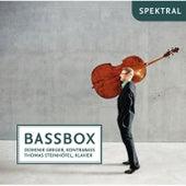 Bassbox by Kontrabass Dominik Greger
