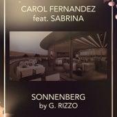 Sonnenberg de Carol Fernandez