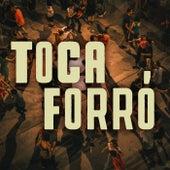 Toca Forró von Various Artists