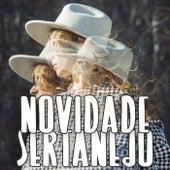 Novidade Sertanejo von Various Artists