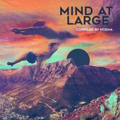 Mind at Large (Compiled by Noema) by Noema
