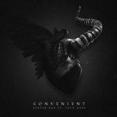 Convenient by Ashten Ray