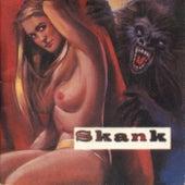 O Samba Poconé de Skank