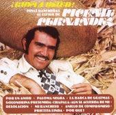 Joyas Rancheras Al Estilo de Vicente Fernández