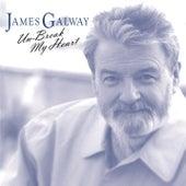 Un-Break My Heart von James Galway