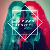 Que des Regrets by lem