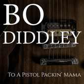 Together on Mother's Day de Bo Diddley
