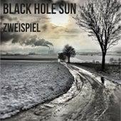 Black Hole Sun de Zweispiel