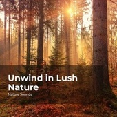 Unwind in Lush Nature fra Sleep Sounds of Nature