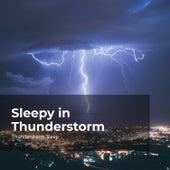 Sleepy in Thunderstorm by Thunderstorm Sleep