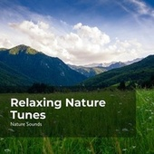Relaxing Nature Tunes fra Nature Sounds Nature Music (1)