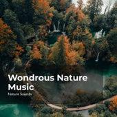 Wondrous Nature Music fra Sleep Sounds of Nature