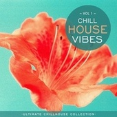 Chill House Vibes Vol 1: Ultimate Chill House Collection by Chill N Chill