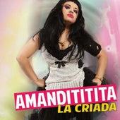 La Criada - Single by Amandititita