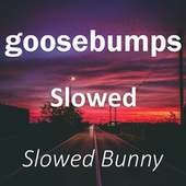 Goosebumps Slowed (Remix) by Slowed Bunny