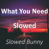 What You Need Slowed (Remix) by Slowed Bunny