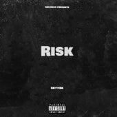 Risk fra Skyy9k