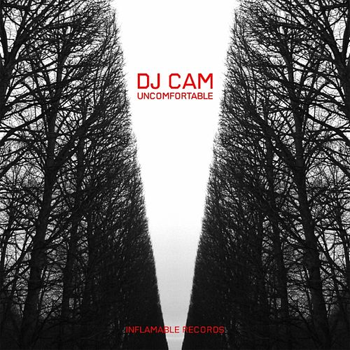 Uncomfortable EP (feat. Chris James) by DJ Cam