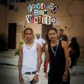 Favelado Bem Vestido by Alqvimia