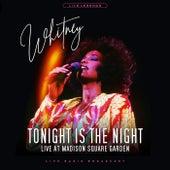 Whitney Houston - WNEW FM Radio Broadcast Madison Square Garden April 1991 di Whitney Houston