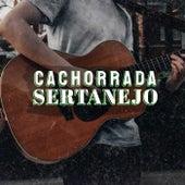 Cachorrada Sertanejo de Various Artists
