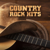 Country Rock Hits de Various Artists