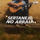 Sertanejo no Arraiá de Various Artists