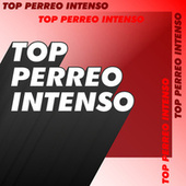Top Perreo Intenso de Various Artists