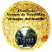 El Mejor del Mundo by Mariachi Vargas de Tecalitlan