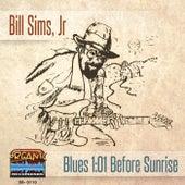 Blues 101: Before Sunrise de Bill Sims  Jr