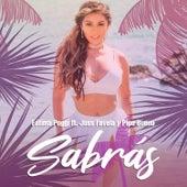 Sabrás (Salsa) by Fatima Poggi