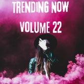 Trending Now Volume 22 von Various Artists