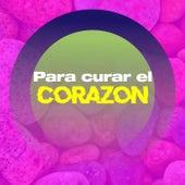 Para curar el corazón by Various Artists