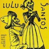Assim Caminha A Humanidade de Lulu Santos