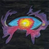 Blackbird by Sandra Buchner