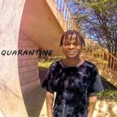 Switch Flow by Quarantino