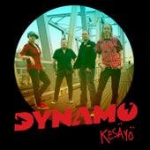Kesäyö von Dynamo