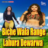 Biche Wala Range Lahura Dewarwa by Gunjan