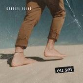 Eu Sei (Acústico) by Gabriel Elias