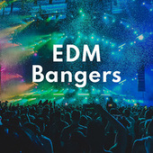 EDM Bangers by Various Artists