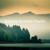 Calming Acoustic Playlist de Various Artists