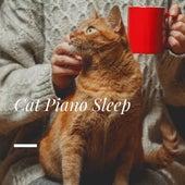 Cat Piano Sleep by Cat Music