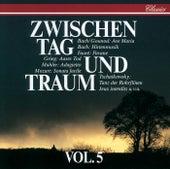 Zwischen Tag Und Traum Vol.5 by Various Artists