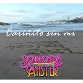Cariñito Sin Mi de La Sonora Master