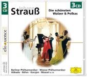 Die schönsten Walzer & Polkas von Various Artists