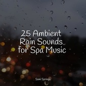25 Ambient Rain Sounds for Spa Music di Lullabies for Deep Meditation
