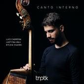 Canto Interno by Luis Cabrera