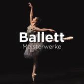 Ballett Meisterwerke von Various Artists