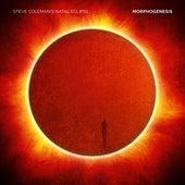 Morphogenesis by Steve Coleman's Natal Eclipse
