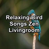 Relaxing Bird Songs Zen Livingroom fra Animal and Bird Songs (1)